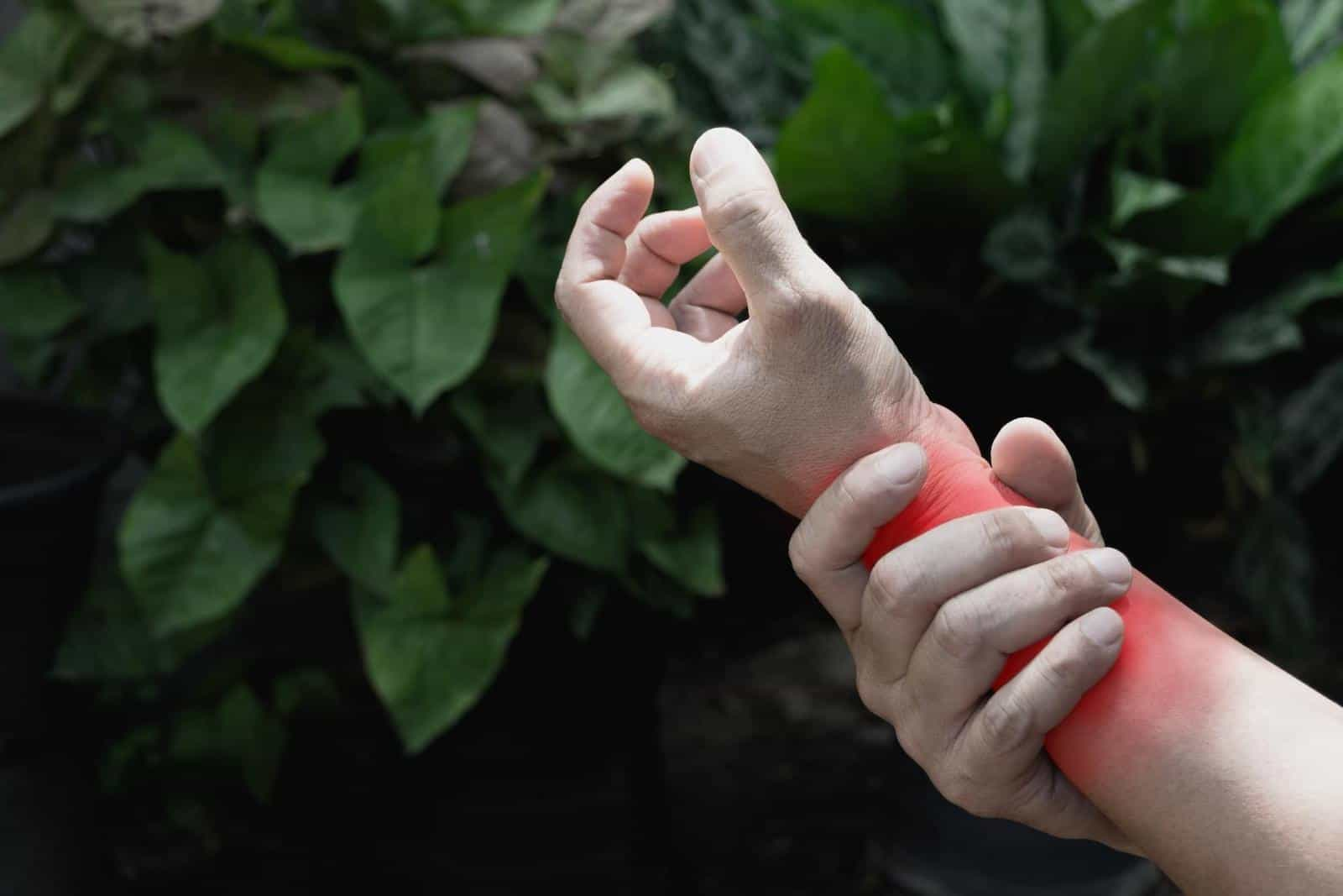 Natural remedies for arthritis: Person holding wrist