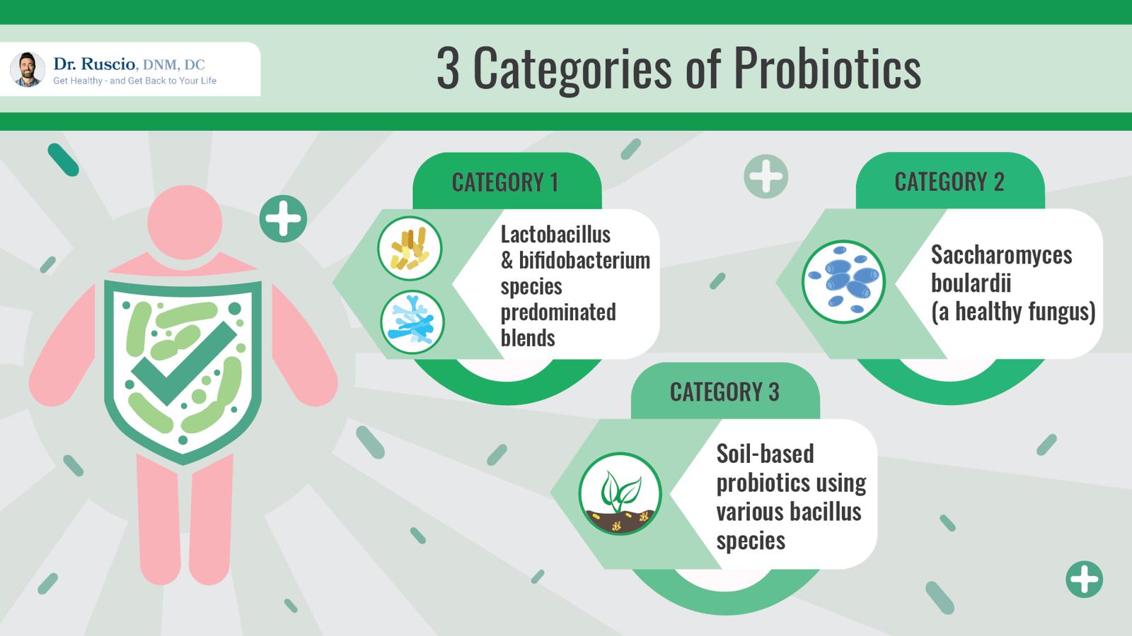 3 Categories of Probiotics