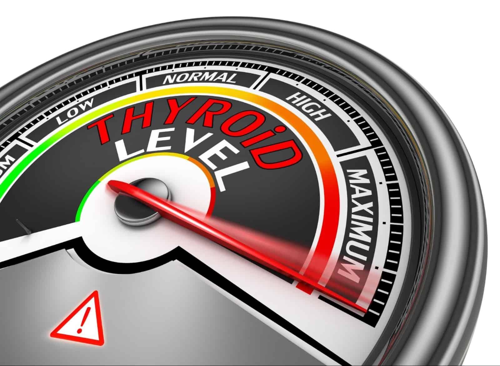 optimal thyroid levels: Thyroid level meter at the maximum level