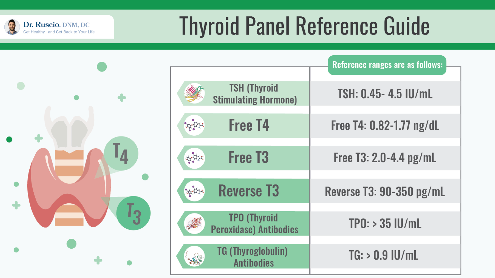 optimal thyroid levels: Thyroid panel reference guide chart by Dr. Ruscio