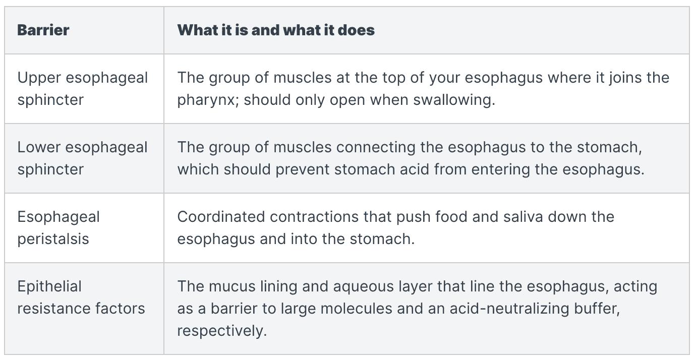 LPR symptoms: stomach contents barriers