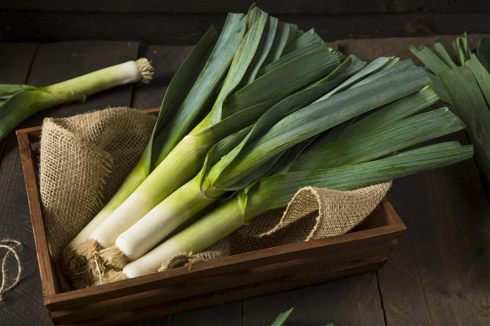 Foods high in sulfur: green leeks